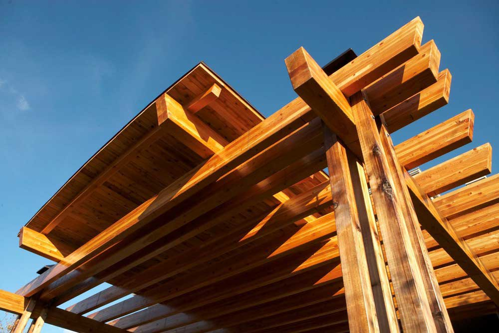 brown wooden pergola